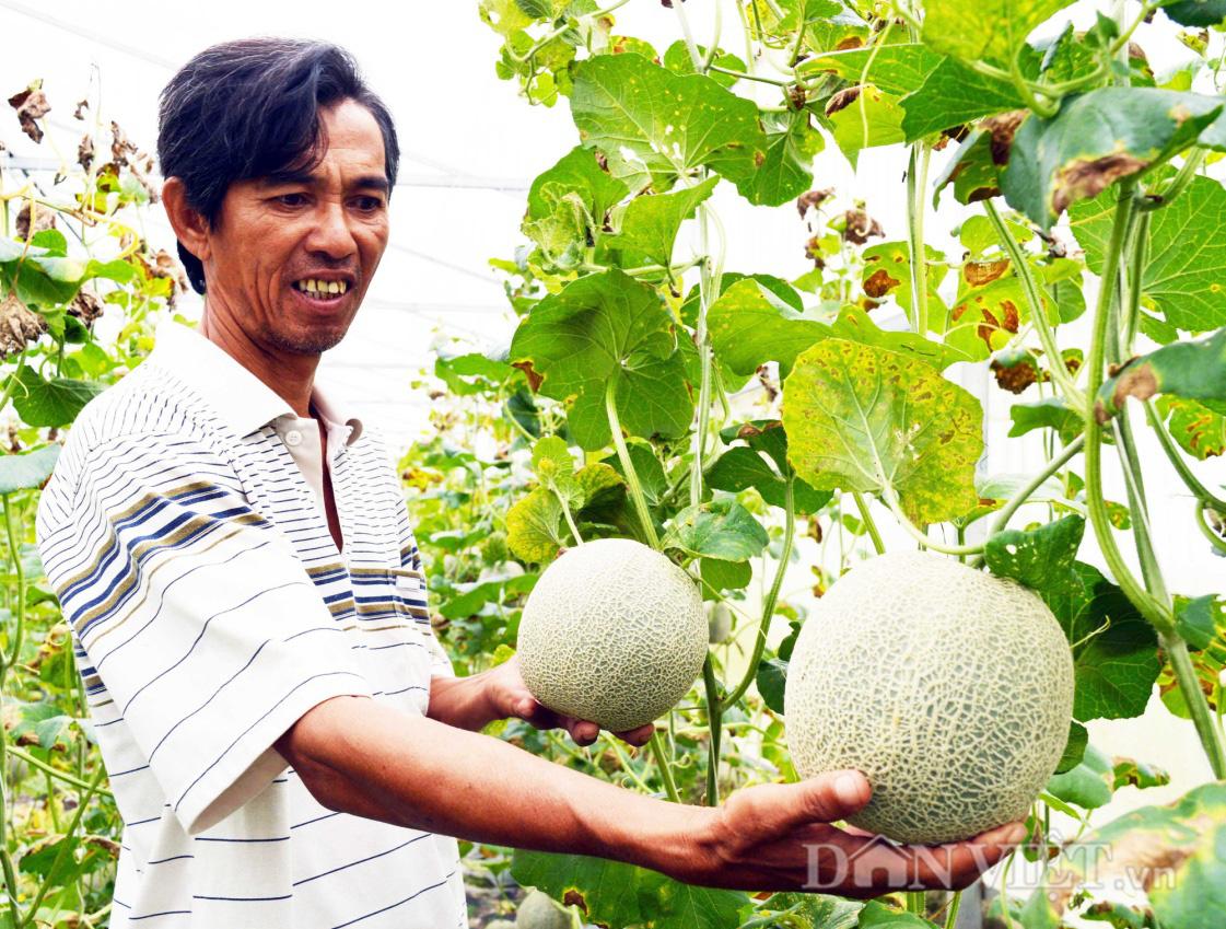 """""""Bơm"""" 17.500 tỷ đồng phát triển nông nghiệp ĐBSCL bền vững, gắn với xây dựng nông thôn mới - Ảnh 1."""