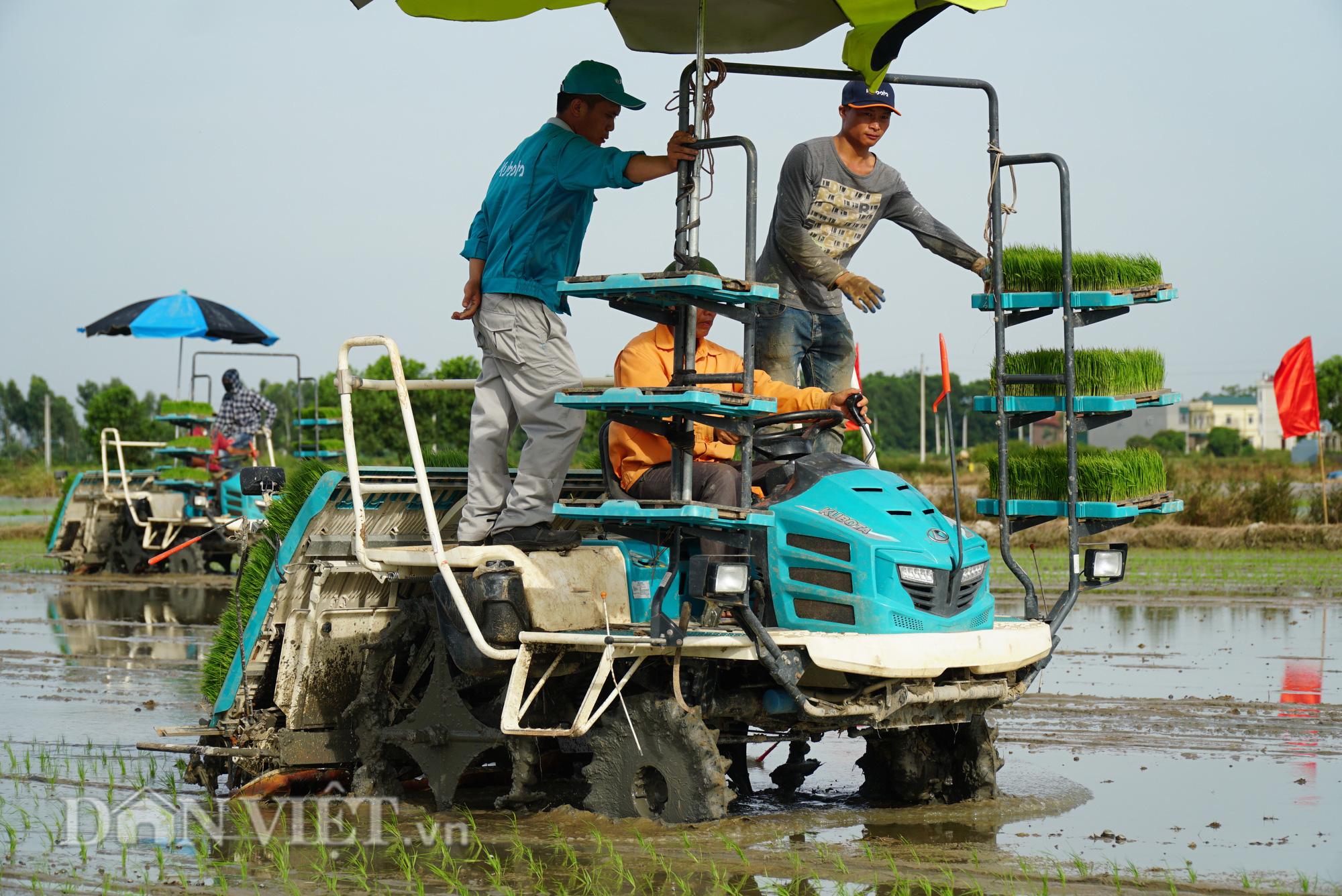 Hải Dương: Lần đầu tiên trình diễn máy cấy lúa trên đồng ruộng - Ảnh 9.