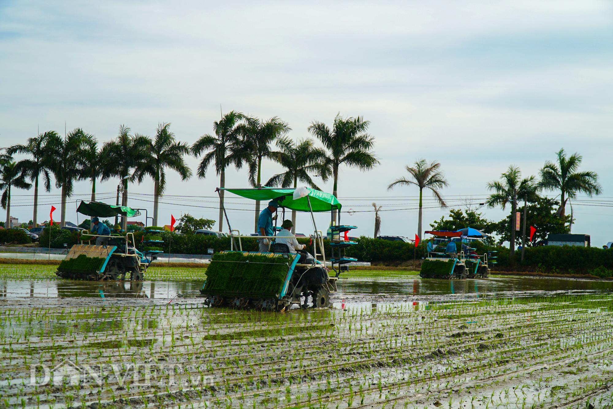 Hải Dương: Lần đầu tiên trình diễn máy cấy lúa trên đồng ruộng - Ảnh 12.