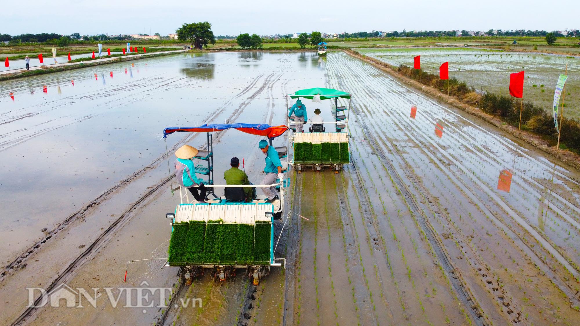 Hải Dương: Lần đầu tiên trình diễn máy cấy lúa trên đồng ruộng - Ảnh 7.
