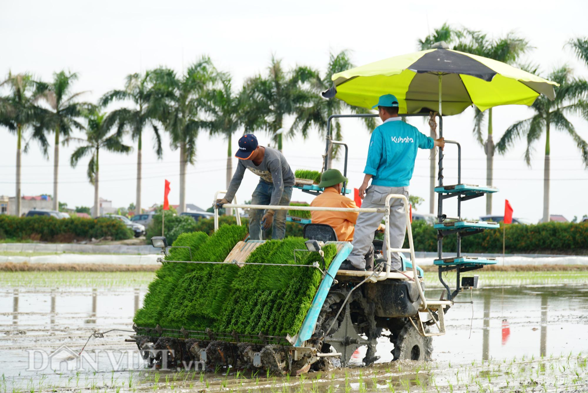 Hải Dương: Lần đầu tiên trình diễn máy cấy lúa trên đồng ruộng - Ảnh 10.