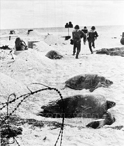 Hải quân Việt Nam giải phóng hàng loạt hòn đảo trong chiến dịch Hồ Chí Minh - Ảnh 10.