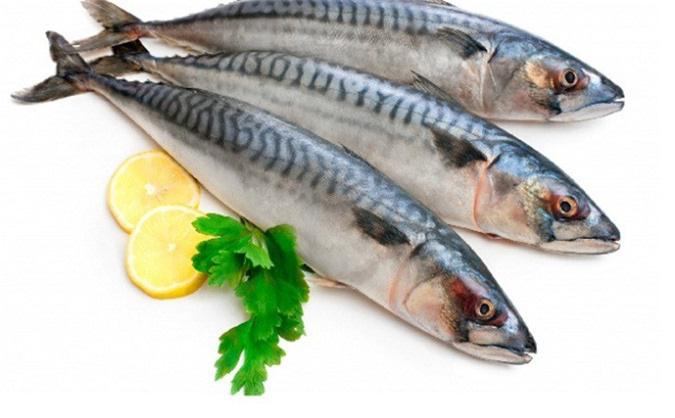7 loại cá mà bạn nên hạn chế ăn, loại thứ 4 rất nhiều người vẫn ăn thường xuyên - Ảnh 2.