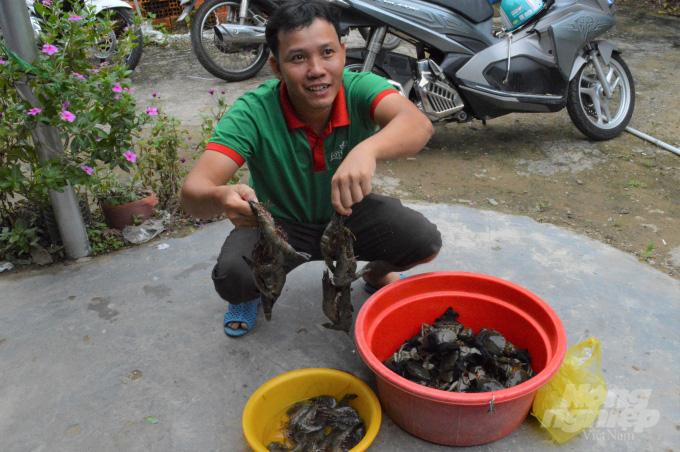 Kiên Giang: Cho cua kềnh ở chung với tôm sú, cứ 1ha dân bắt 1 tấn, bán được 160 triệu đồng - Ảnh 1.