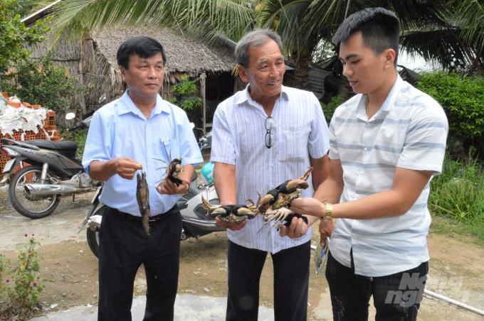 Kiên Giang: Cho cua kềnh ở chung với tôm sú, cứ 1ha dân bắt 1 tấn, bán được 160 triệu đồng - Ảnh 4.