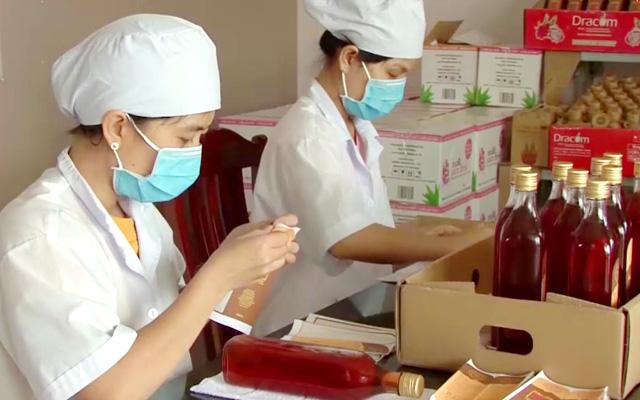 """Chế biến sâu giúp thanh long Bình Thuận """"quẳng gánh lo"""" rớt giá - Ảnh 3."""