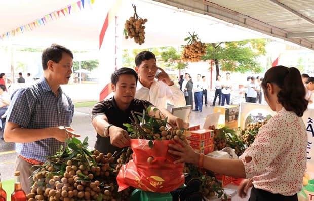 Nhà vườn Lạng Sơn và 7 tỉnh thành giao dịch trực tuyến với 70 DN nhập khẩu  - Ảnh 1.