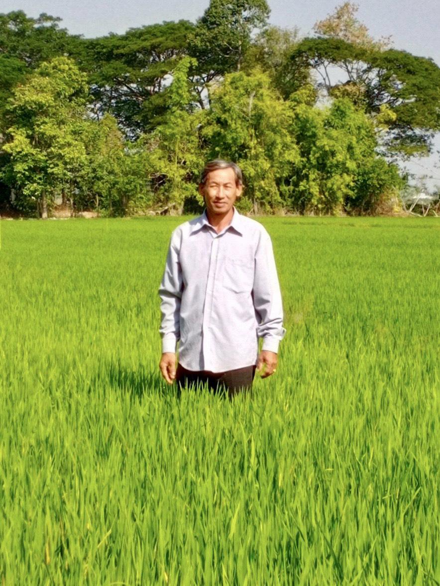 Bí kíp bón phân tăng năng suất lúa lên 7 tấn/ha - Ảnh 1.