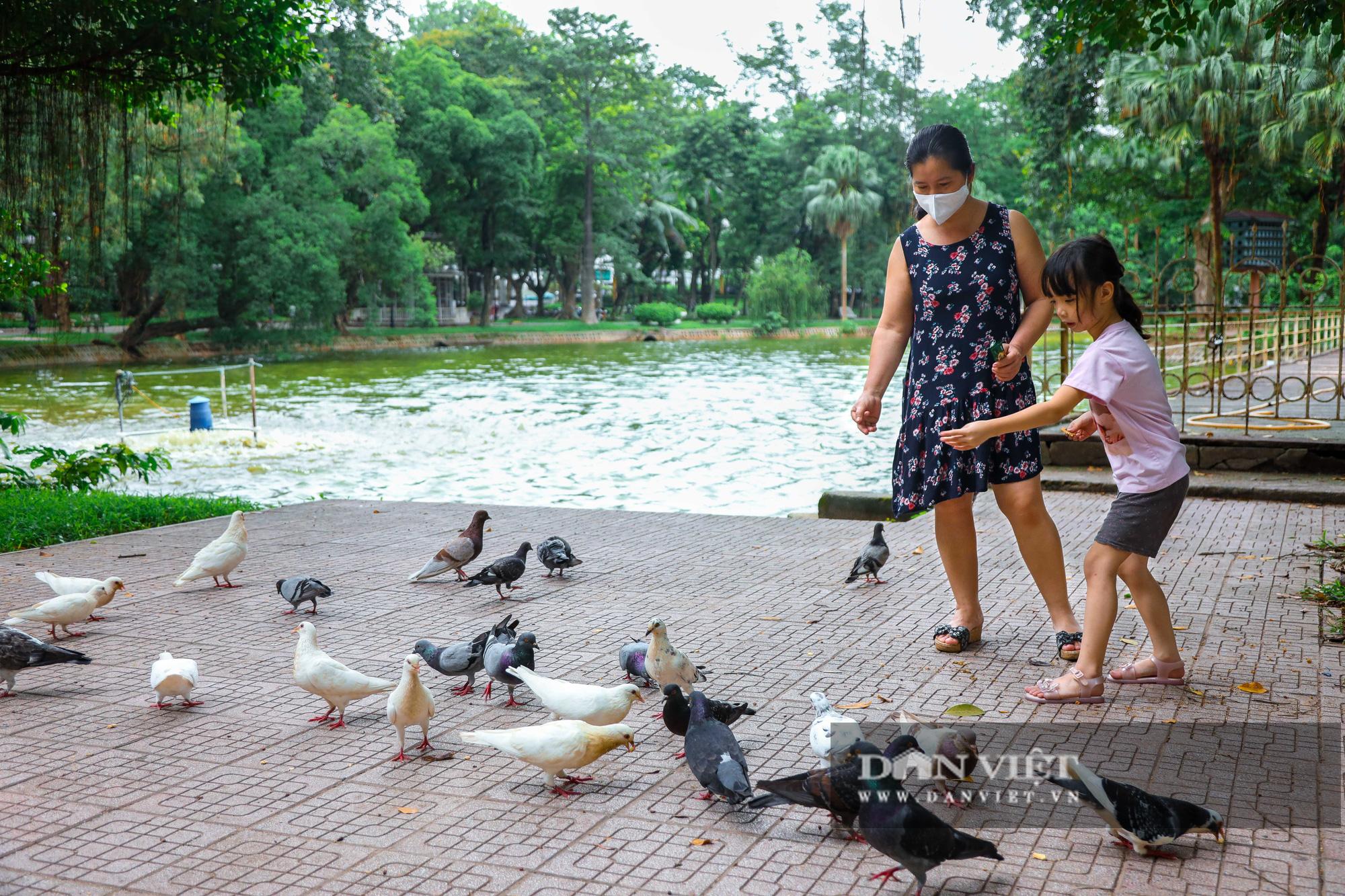 Hà Nội: Mặt nước hồ Bách Thảo bất ngờ chuyển màu vàng lạ mắt - Ảnh 11.