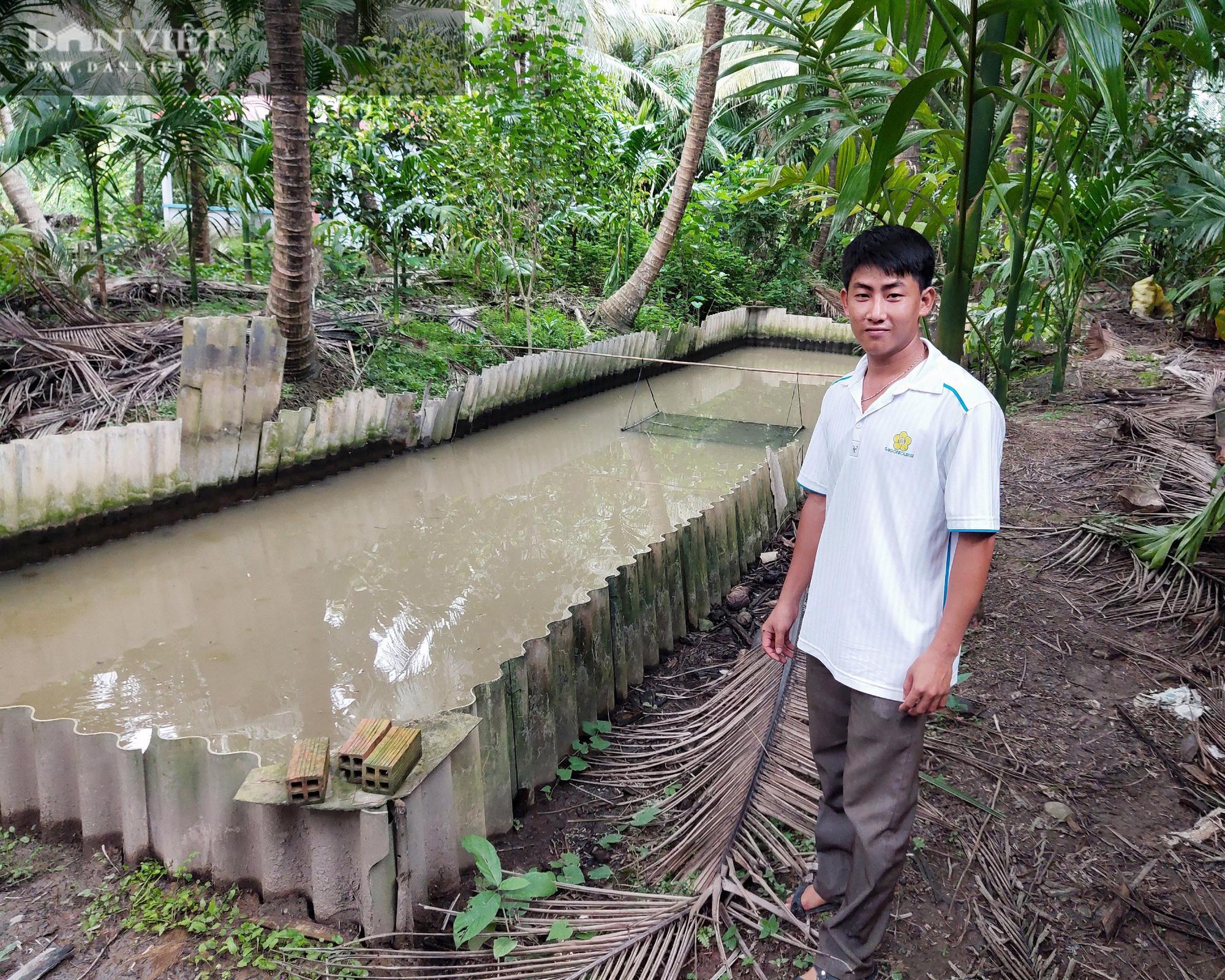 Sóc Trăng: Anh nông dân kiếm vài trăm triệu/vụ nhờ 15 năm đam mê nuôi ba ba - Ảnh 4.