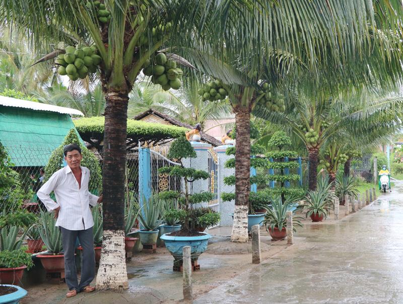 Bến Tre: Bất ngờ ở vùng đất đáng sống, khu phố trồng những cây dừa thấp tè mà ra trái quá trời - Ảnh 1.