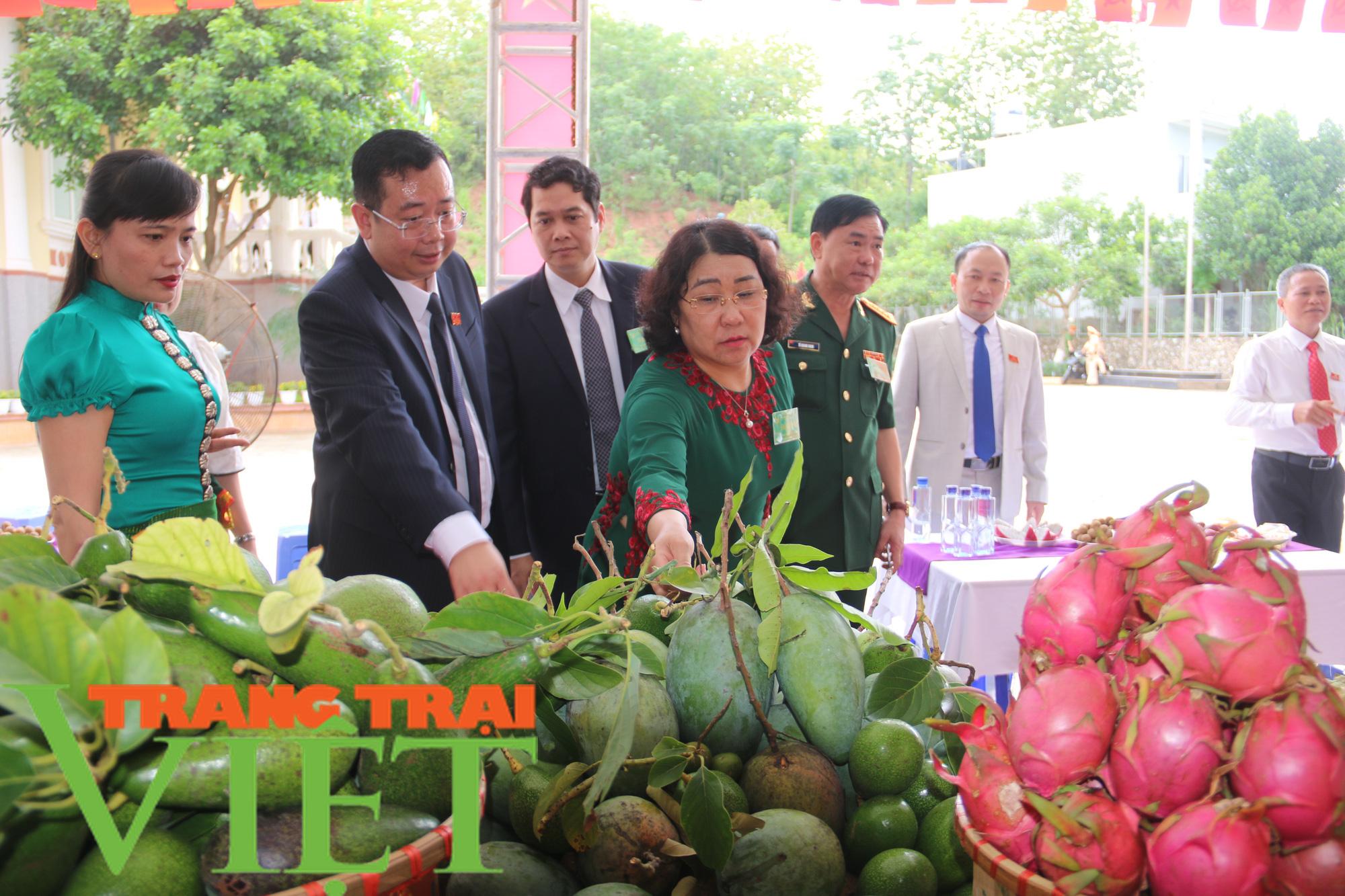 Hội Nông dân Yên Châu: Nhiều giải pháp giúp hội viên phát triển sản xuất - Ảnh 5.