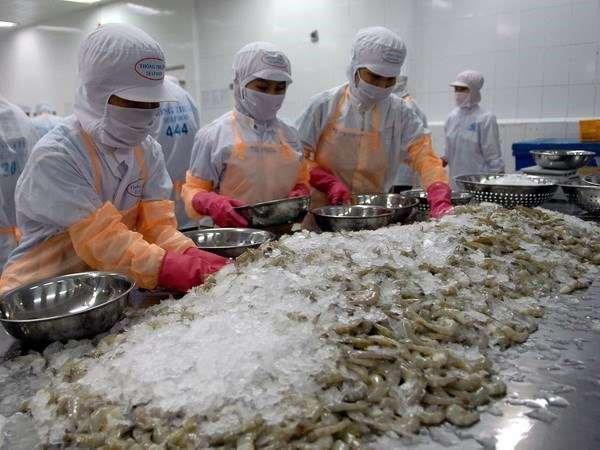 Xuất khẩu thủy sản giảm mạnh mùa covid-19 - Ảnh 2.