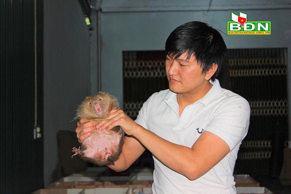 """Đắk Nông: """"Nhốt"""" loài thú ham ăn tre nứa ở trong nhà, trai Đắk Nông nuôi không kịp để bán - Ảnh 5."""