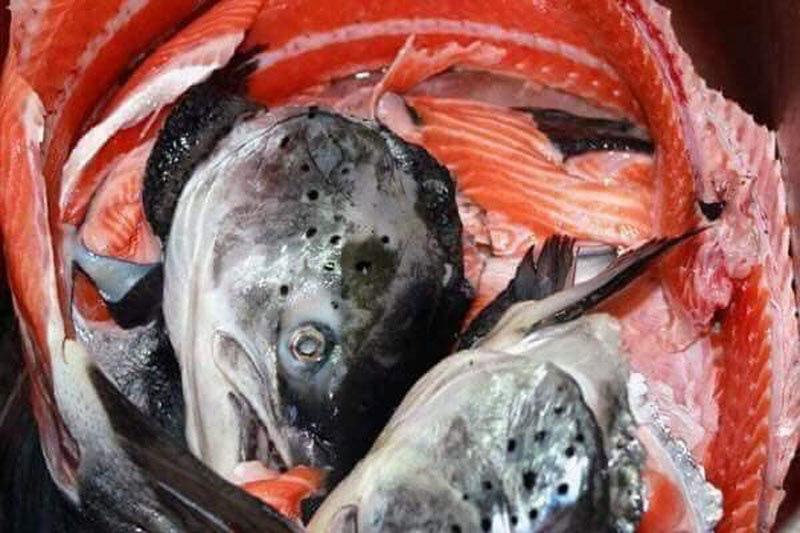 """Đặc sản sang chảnh giá chỉ 10.000 đồng/kg, chế đủ món với hải sản """"nhà giàu"""" - Ảnh 3."""