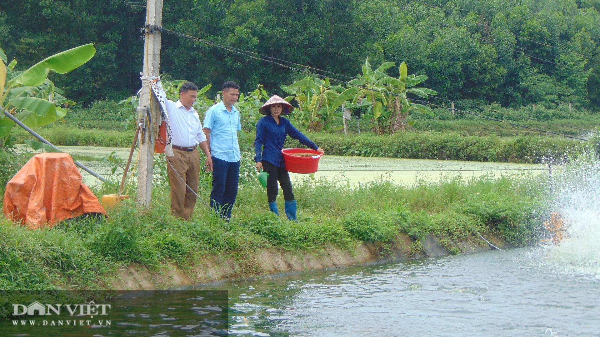 Thái Nguyên: Lão nông thu trăm triệu mỗi năm từ nuôi cá thả ao - Ảnh 2.