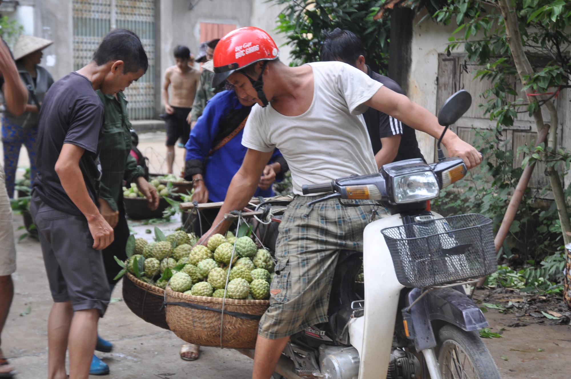 Lạng Sơn: Nhộn nhịp ở chợ Na lớn nhất nước - Ảnh 5.