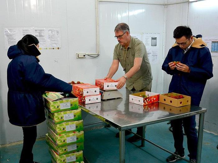 Tin vui: Bộ Nông nghiệp Mỹ đặc cách cử chuyên gia sang Việt Nam giám sát xuất khẩu trái cây - Ảnh 1.