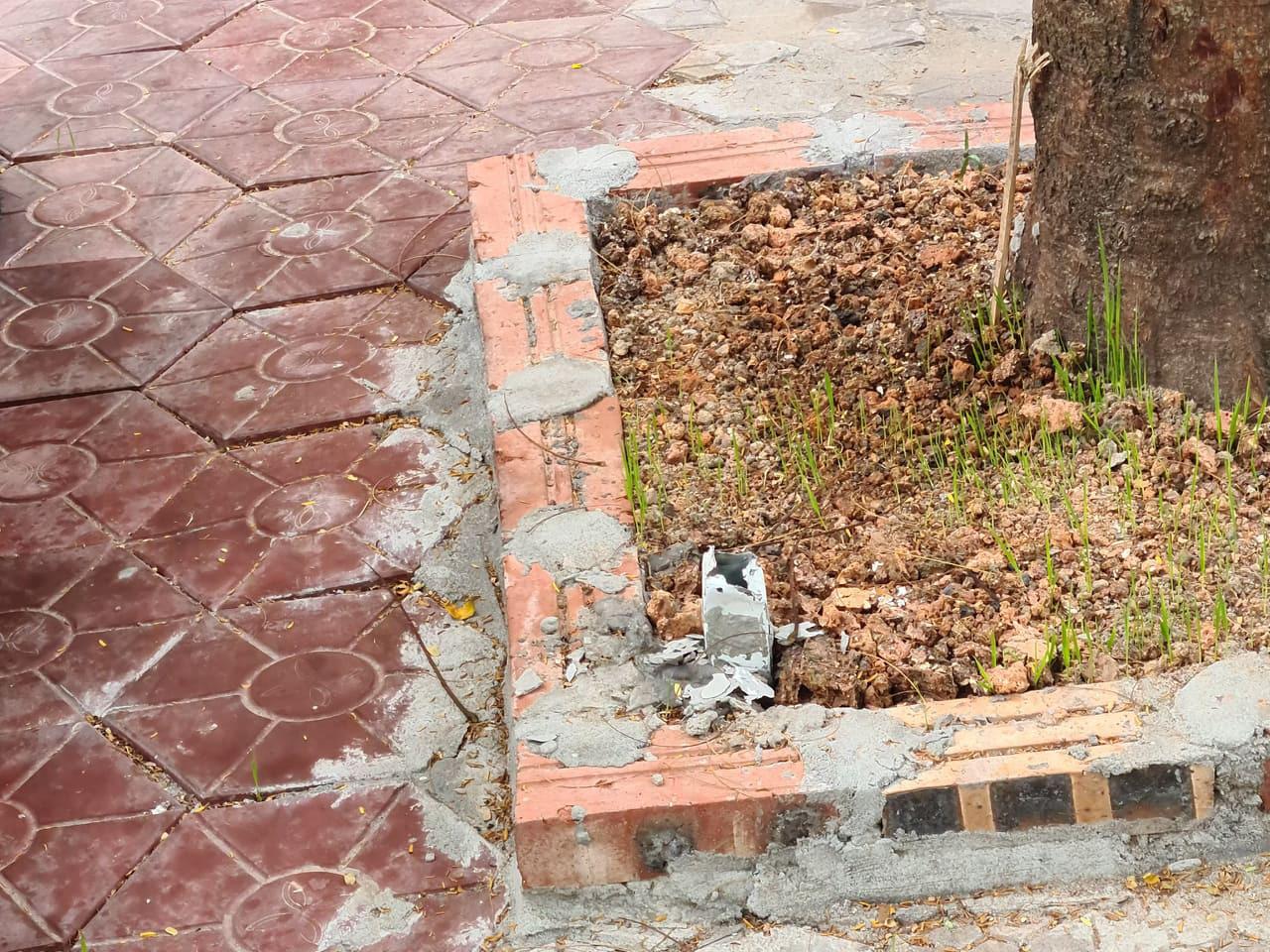 Hải Phòng: Yêu cầu xác minh, làm rõ việc cọc sắt chôn dày đặc trên phố gây nguy hiểm cho người dân - Ảnh 4.