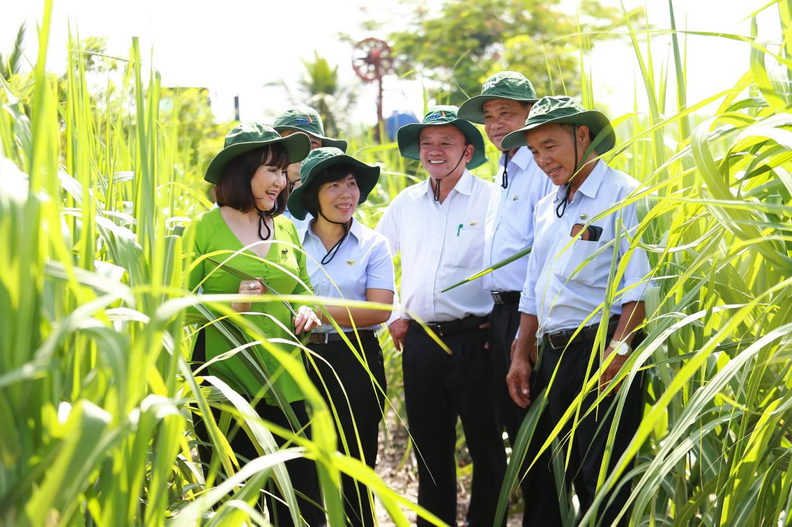 TTC Sugar thành lập Viện Nghiên cứu Ứng dụng Kỹ thuật Nông nghiệp TTC Attapeu - Ảnh 2.