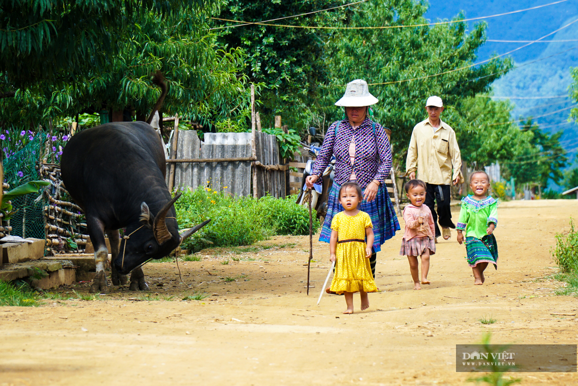 Cu Vai: Bản làng bằng phẳng đẹp nhất của người H'Mông - Ảnh 7.