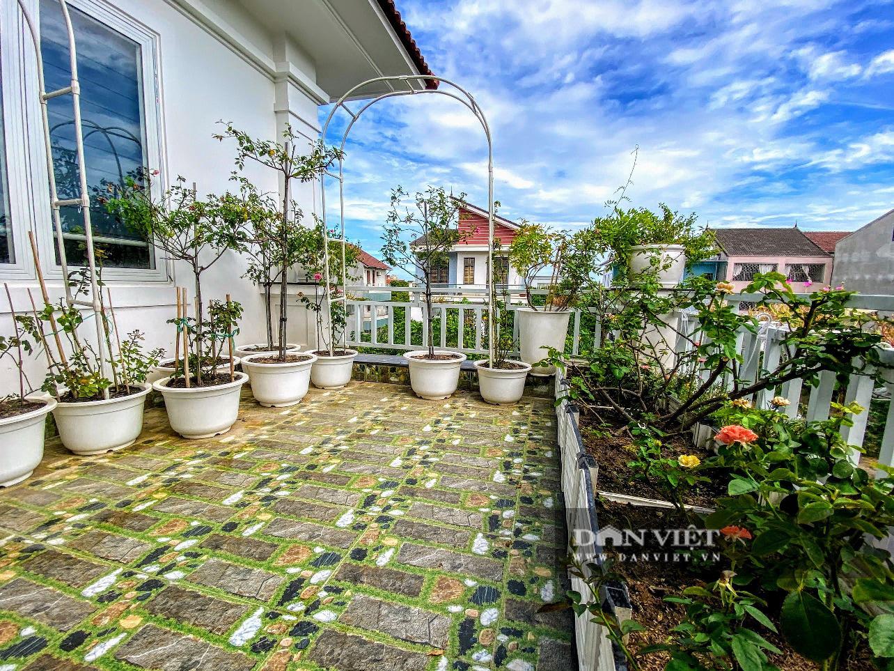 Làm vườn trên sân thượng, nữ kế toán phục vụ rau xanh, sạch quanh năm cho gia đình - Ảnh 4.