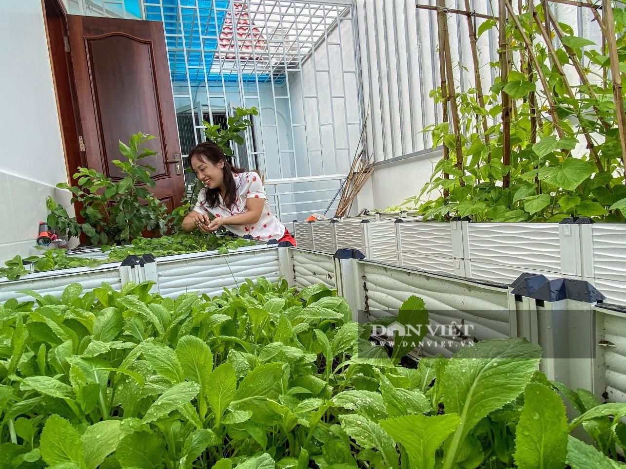 Làm vườn trên sân thượng, nữ kế toán phục vụ rau xanh, sạch quanh năm cho gia đình - Ảnh 3.
