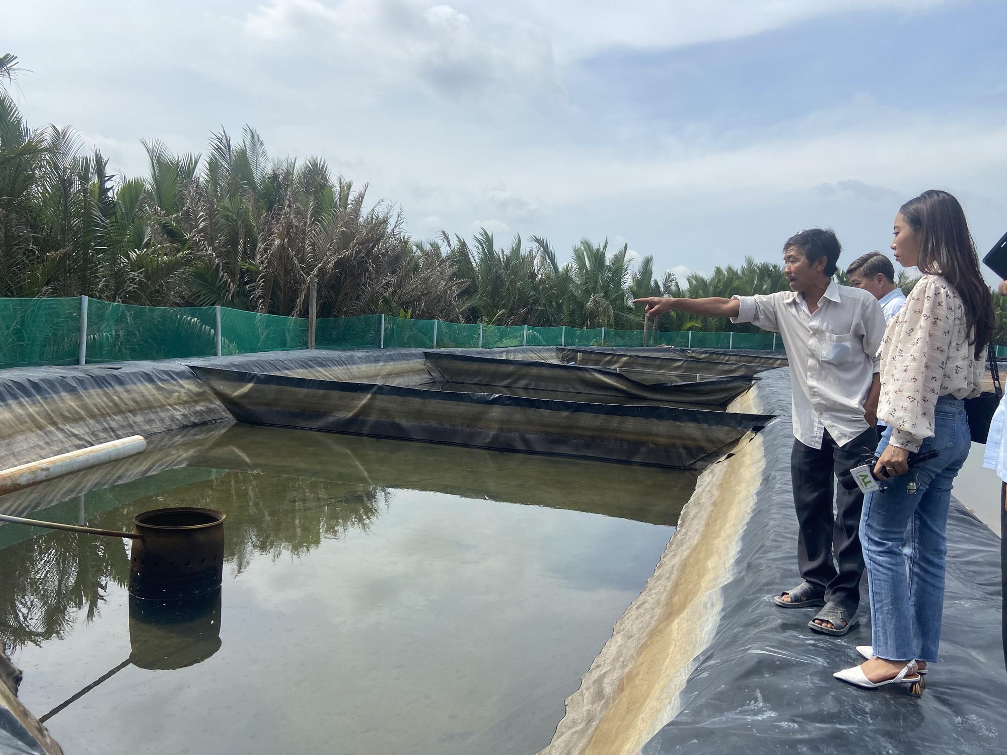 """""""Liều"""" nuôi tôm công nghệ cao dày đặc trên ao nổi, một nông dân tỉnh Đồng Nai thu 10 tỷ mỗi năm - Ảnh 2."""