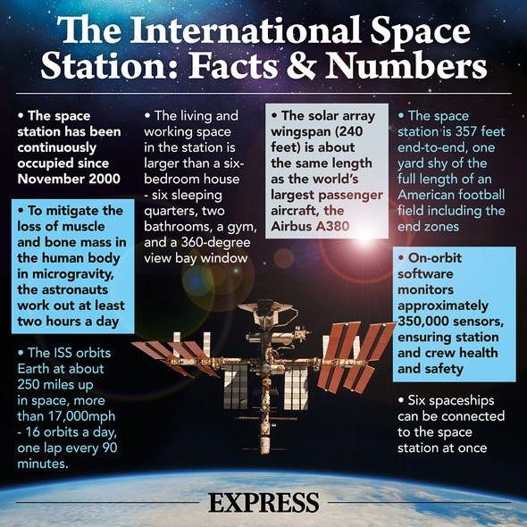 Nhà du hành vũ trụ Nga làm dấy lên giả thuyết người ngoài hành tinh là có thật? - Ảnh 3.