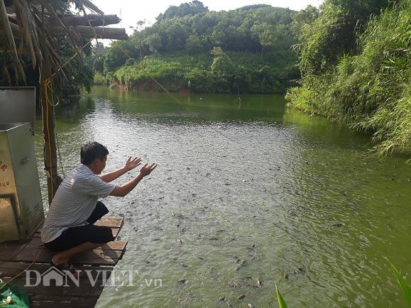 """Công bố chính thức danh sách 63 """"Nông dân Việt Nam xuất sắc"""" năm 2020 - Ảnh 2."""