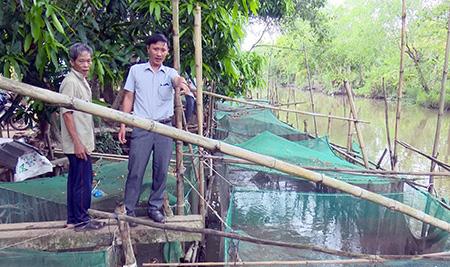 Đón mùa nước nổi, nông dân tỉnh Hậu Giang đã nuôi 360 lồng cá, vèo cá, thả nhiều nhất là loài cá gì? - Ảnh 1.