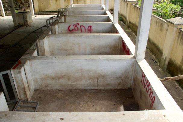 Nghệ An: Lò giết mổ gia súc 5 tỷ ngừng hoạt động, ô chuồng trống không chỉ vì thiếu thứ này - Ảnh 3.