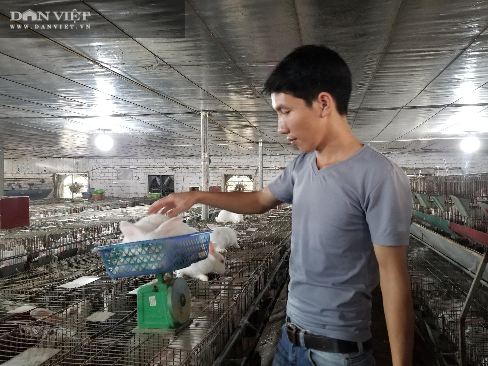 """Lạng Sơn: Vì sao 1 cử nhân Đại học Điện lực lại được bình chọn là """"Nông dân Việt Nam xuất sắc"""" năm 2020? - Ảnh 7."""