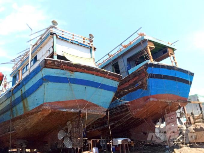 Bình Định: Vì sao cảng cá Quy Nhơn lại là nổi kinh hoàng của ngư dân trước mùa mưa bão? - Ảnh 1.