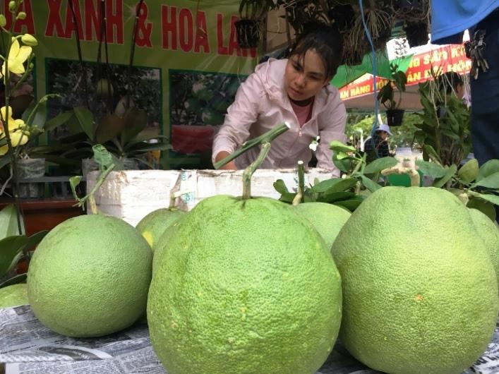Ảnh hưởng dịch Covid-19: Dừng tổ chức phiên chợ nông sản Khánh Hòa năm 2020 - Ảnh 1.
