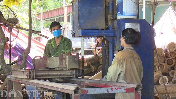 Phú Thọ: Từ hộ nghèo người dân phải góp tiền xây nhà, thành tỷ phú nhờ nghề gỗ công nghiệp - Ảnh 8.