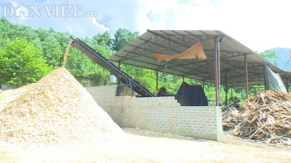 Phú Thọ: Từ hộ nghèo người dân phải góp tiền xây nhà, thành tỷ phú nhờ nghề gỗ công nghiệp - Ảnh 7.