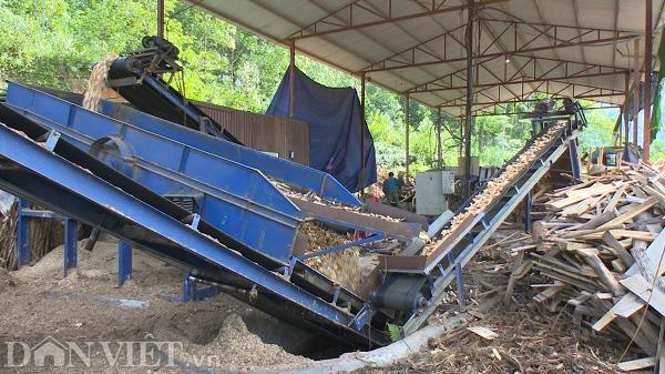 Phú Thọ: Từ hộ nghèo người dân phải góp tiền xây nhà, thành tỷ phú nhờ nghề gỗ công nghiệp - Ảnh 6.