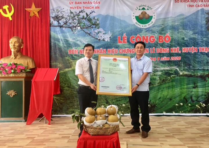 Lê Đông Khê - loại quả đáng ăn nhất Việt Nam được cấp nhãn hiệu chứng nhận - Ảnh 2.