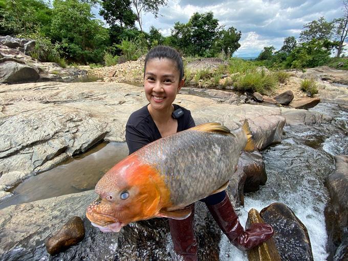 """Con cá quý hiếm mà nữ diễn viên Kim Thư """"khoe"""" ở một ngọn núi lửa tỉnh Gia Lai là loài cá gì? - Ảnh 1."""