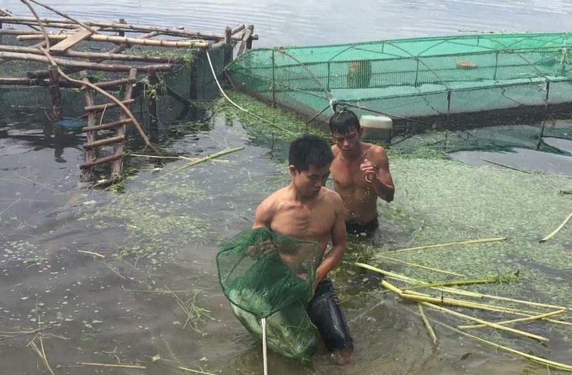 TT-Huế: Dân rớt nước mắt nhìn toàn cá đặc sản đắt tiền lăn ra chết - Ảnh 1.