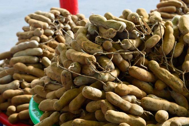 Loại quả tốt như sâm Hàn Quốc, tại Việt Nam giá chỉ khoảng 70.000 đồng/kg - Ảnh 2.