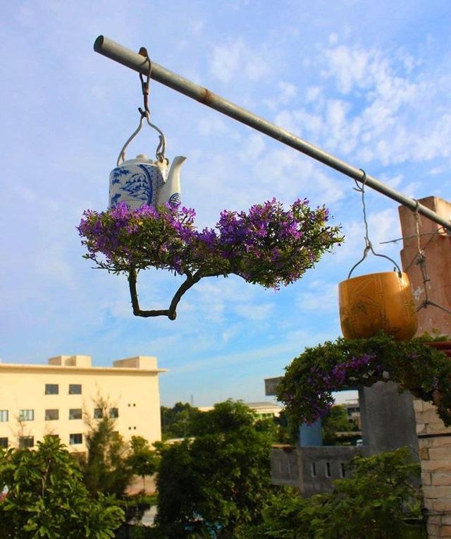 """Ấn tượng vườn bonsai ngược trên sân thượng nhà phố của """"dị nhân"""" Quảng Nam - Ảnh 6."""