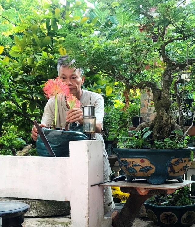 """Ấn tượng vườn bonsai ngược trên sân thượng nhà phố của """"dị nhân"""" Quảng Nam - Ảnh 15."""