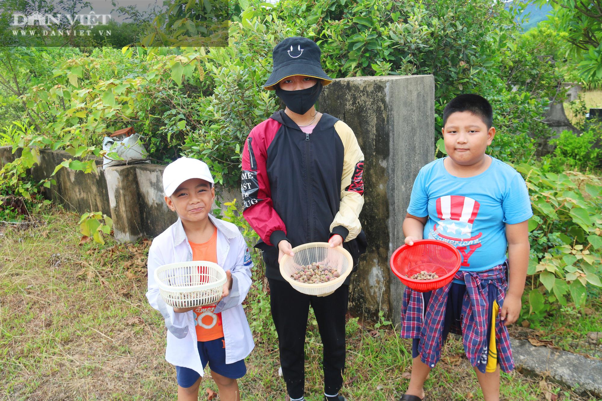Hà Tĩnh: Người dân đổ xô lên đồi hái sim rừng, kiếm tiền triệu mỗi ngày - Ảnh 12.