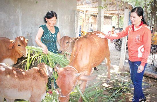 Nguồn vốn nhỏ tạo đòn bẩy lớn cho nông dân làm giàu - Ảnh 1.