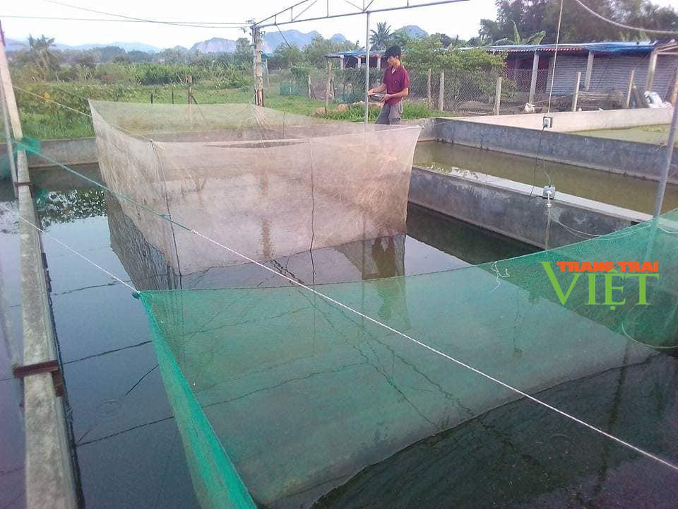 Chàng trại xứ Thanh thu hàng trăm triệu từ nuôi ốc nhồi, lươn, ếch - Ảnh 2.