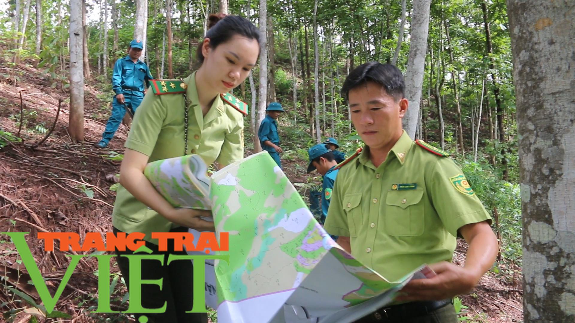 Hạt Kiểm lâm Yên Châu với công tác tuần tra bảo vệ rừng - Ảnh 6.