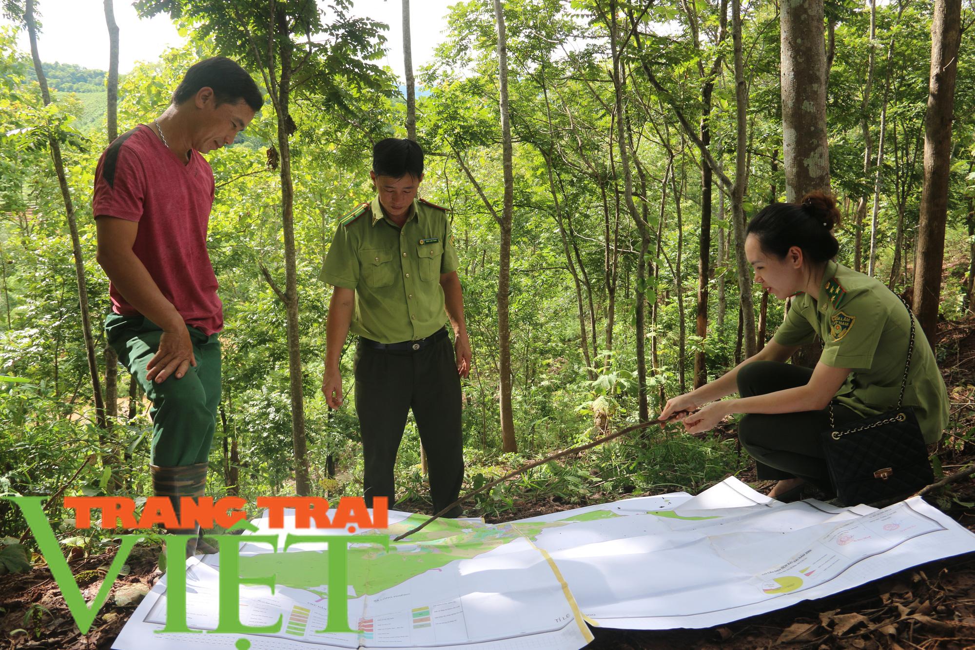 Hạt Kiểm lâm Yên Châu với công tác tuần tra bảo vệ rừng - Ảnh 5.