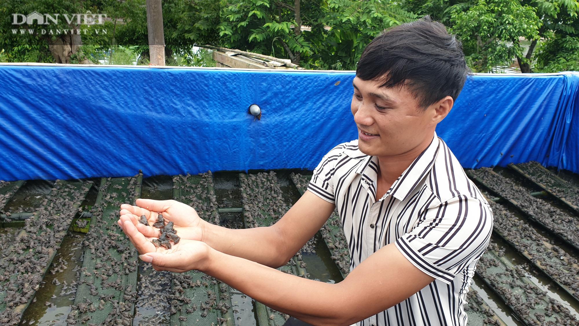 Nam Định: 9x về quê miệt mài nuôi ếch, bỏ túi gần nửa tỷ mỗi năm  - Ảnh 1.